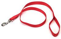 Поводок для собак Coastal Nylon Training, нейлон, 2,5 см х 1,8 м, хантер