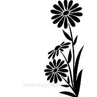 Папка для тиснения от Darice — Large daisy, размер 10,7х14,5 см, 1 шт