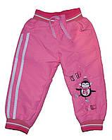 """Штаны детские """"Пингвин"""" теплые на подкладке для девочек. размеры 2-5 лет"""