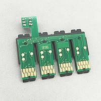 Чип для СНПЧ Epson (T1811-T1814)  XP102/205 Combo