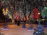 Новогоднее оформление светодиодными гирляндами деревьев, улиц, парков, территорий