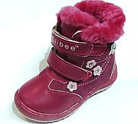 Ботинки зимние для девочки А-828/23/малиновый в наличии 23 р., также есть: 22,23,26, Clibee_Дітекс