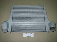 Охладитель-интеркуллер наддувочного воздуха 53205, 54115 (ПРАМО, г.Ржев), ЛР53205-1170300