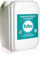 Микроудобрение АВАНГАРД Р МОЛИБДЕН MO - 40, N - 20, аминокислоты. Компания - УКРАВИТ