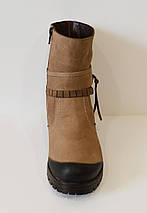 Бежевые женские ботинки Alpino 4055, фото 3