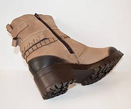 Бежевые женские ботинки Alpino 4055, фото 2
