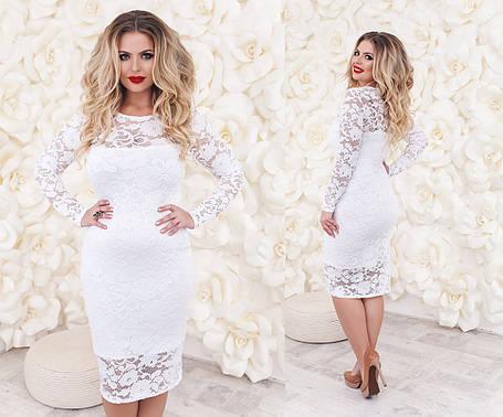 Т2018 Платье коктейльное размеры 48-54 , фото 2