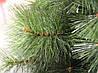 Искусственная сосна новогодняя микс 2.10 м., фото 2