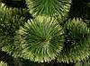 Искусственная сосна распушенная зеленая 1.0 м., фото 2
