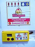 Инкубатор Теплуша (автомат, тэн, влагомер), фото 4