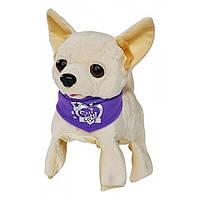 Chi Chi Love Интерактивная собачка Флиппи Flippi 5897257