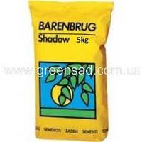 Газонная трава Barenbrug Тенеустойчивая, 5кг