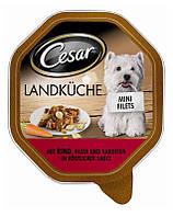 CESAR с индейки и говядины в соусе 150 g x 20 + 4 бесплатно!