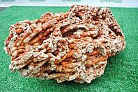 Кораллы натуральные «Spagetti» 10-20 см, 10 кг