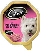 CESAR с телятины и птицы 0.15 kg