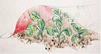 Бело-красный двухслойный укрывной материал Агротекс'Сад с армирующей сеткой, 1,6х5м