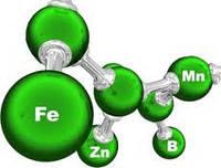 Вплив елементів мінерального живлення на урожай та його якість