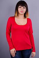 Марсель француз. Женские гольфы больших размеров. Красный., фото 1