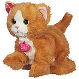Дейзи интерактивная игривая кошечка - FurReal Friends Daisy Hasbro, фото 3