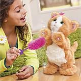 Дейзи интерактивная игривая кошечка - FurReal Friends Daisy Hasbro, фото 4