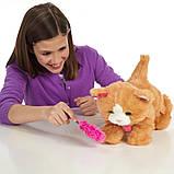 Дейзи интерактивная игривая кошечка - FurReal Friends Daisy Hasbro, фото 5