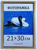 Фоторамка пластиковая 21х30, рамка для фото 166-3