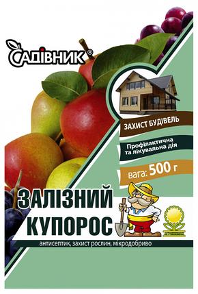 Железный купорос (500 г) — профилактика против возбудителей болезней растений, уничтожения мхов, фото 2
