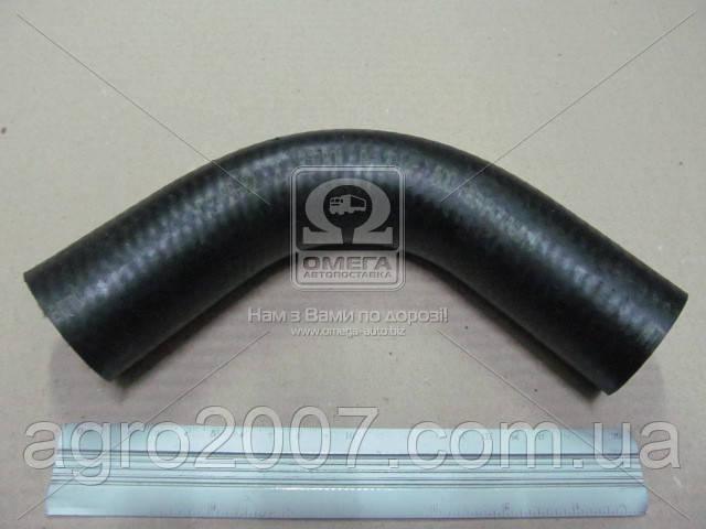 70-1303001 Патрубок радиатора МТЗ верхний (270 мм) Украина
