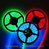Светодиодная гирлянда дюралайт LED SMD 5050, 5 м. - Led подсветка витрин, фото 4