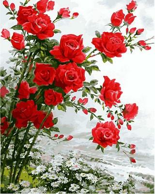 Набор-раскраска по номерам Розы на ромашковом поле