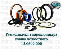 Ремкомплект гидроцилиндра  ковша челюстного Атек-999Е 15.0609.000
