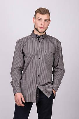 Рубашка мужская UNIQUE ALDO 2117 FUME STRIPE