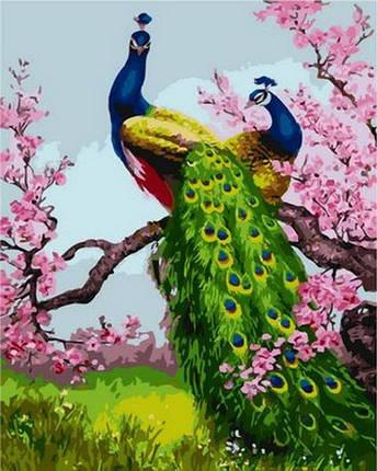 Набор-раскраска по номерам Павлины на ветке сливы, фото 2