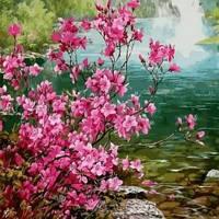 Картина по цифрам Mariposa Куст миндаля Худ Ли Сон Хо  40 х 50 см