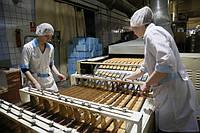 Мини кондитерская фабрика