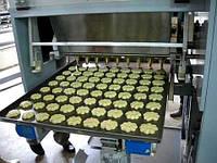 Производство пищевого кондитерского оборудования