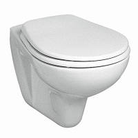 Унитаз- подвесной  IDOL с сидением с микролифтом (белый)