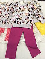 """Костюм для девочек. Детский костюм """"Лаки"""" . Кофточка детская. Штаны."""
