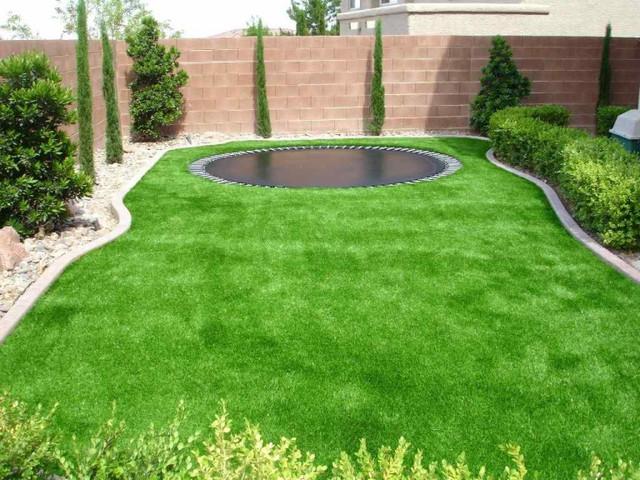 Газонные травы и смеси