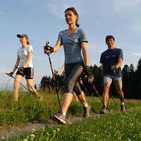 Палки для скандинавской ходьбы Nordic Walking +сумка+2 шт