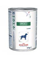 ROYAL CANIN Dog Obesity Management 410 g