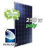 Солнечная панель (батарея, фотомодуль) Perlight Solar PLM-250P-60 poly