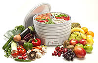 Сушильный аппарат ( сушилка ) для овощей, фруктов, грибов, мяса, рыбы.    EZIDRI   Ultra FD 1000