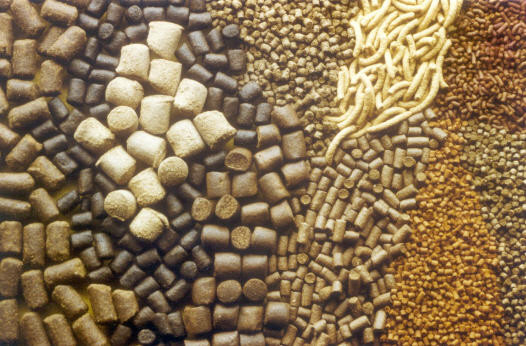 Уникальные свойства гранулированных кормов