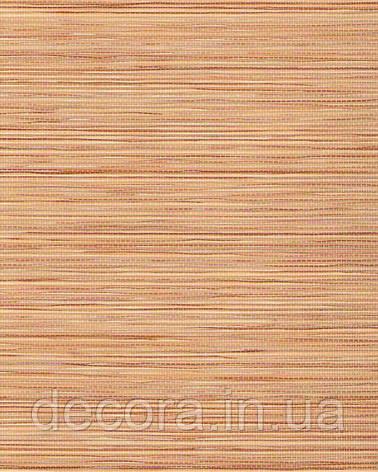 Рулонні штори Міні Шикатан Чайна церемонія 7002 40см, фото 2