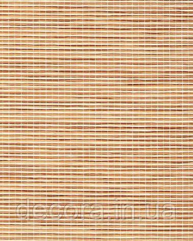 Рулонні штори Міні Шикатан Путь самурая 7001 40см, фото 2