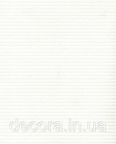Рулонні штори Міні Страйп білий 4045 40см, фото 2