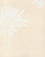 Рулонні штори Міні Аврора бежева 4009 40см