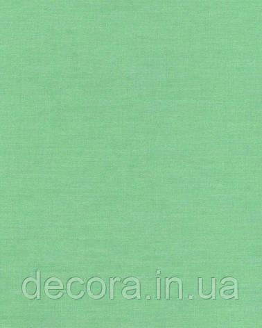 Рулонні штори Міні Ара салатовий 1001 40см, фото 2