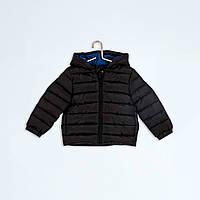 Куртка для мальчика демисезонная Кияби на холлофайбере +купить